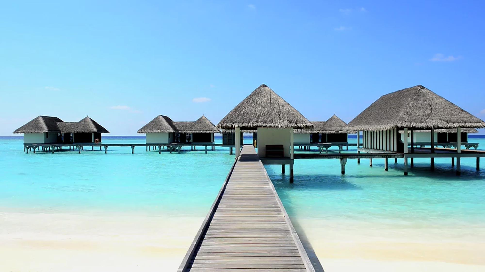 جزر المالديف شهر العسل موقع العروس