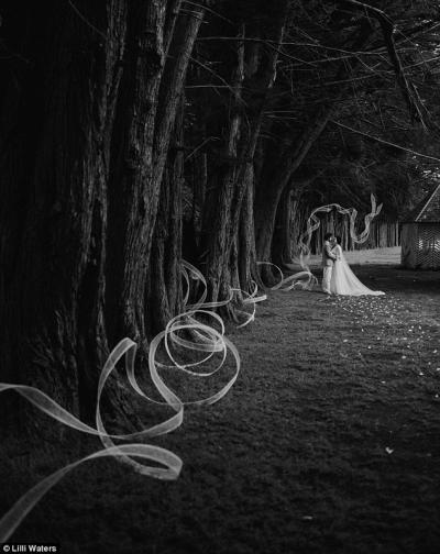 wedding_art_using_mesh_1