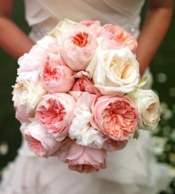 english_roses
