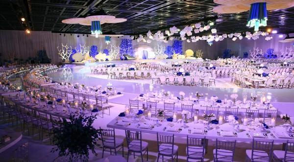 Olivier Dolz Weddings