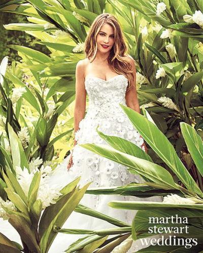 sofia_vergara_wedding