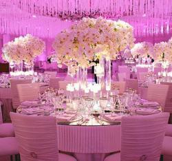 Lamasat Events Wedding & Event Organized