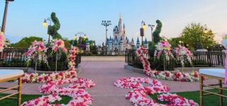Disney World Unveils New Wedding Venue