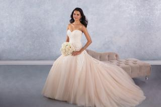 Alfred Angelo 2017 Signature Bridal Collection 12