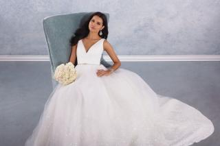The Beautiful Alfred Angelo Signature Collection