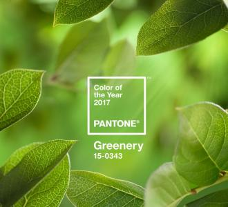 Your Wedding in Pantone's Color of 2017: Greenery