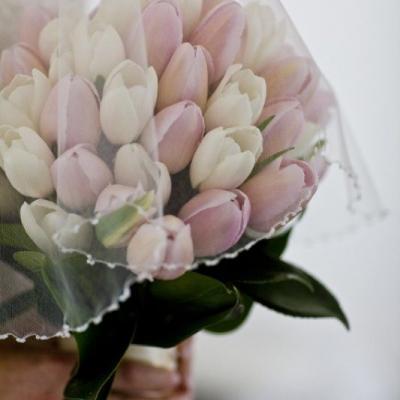 مسكات عرايس من أزهار التوليب لعروس الربيع