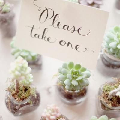 Wedding Favor Ideas You Will Love
