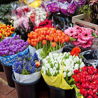 The 4 Most Popular Flower Shops in Riyadh