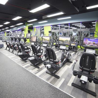 The Top Gyms in Qatar