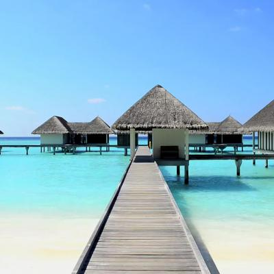 Honeymoon Destination: The Magical Maldives!