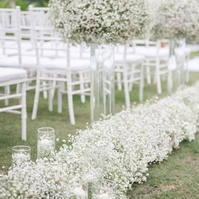 A Wedding Favorite: The Baby's Breath Flower