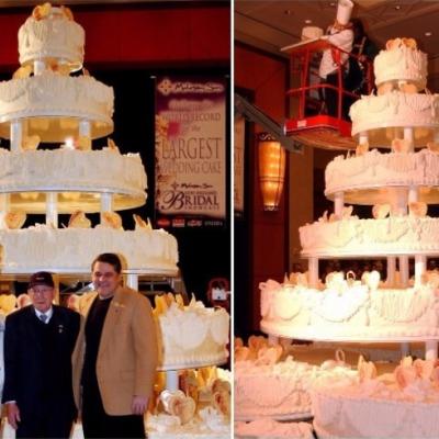 Guinness World Record Weddings