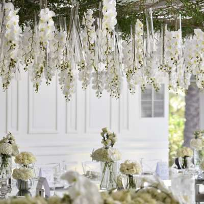 Orchids The Perfect Flower for Your Wedding