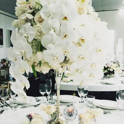 Virginie Wedding Planning and Design