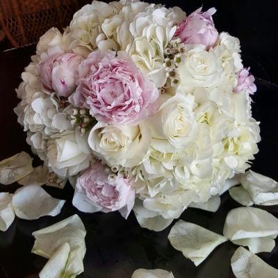 أزهار دنيز