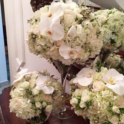 Lilya flowers