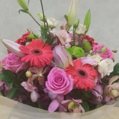 Mooi Flowers
