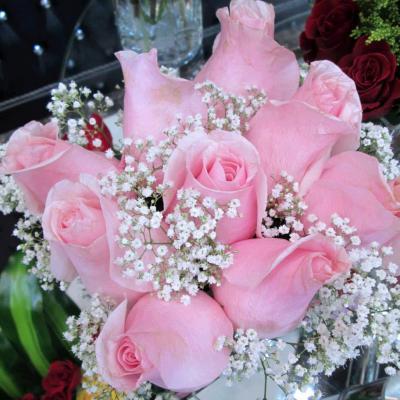 Princess of Roses QATAR