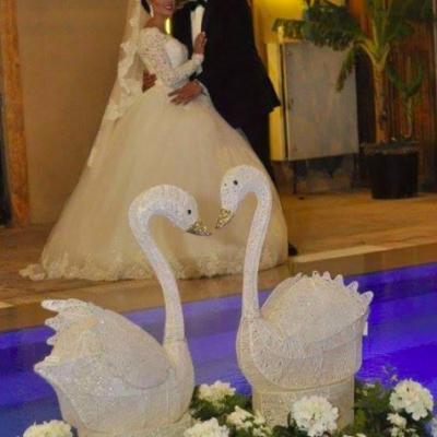 Weddex Wedding & Event Planning