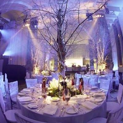 Sparkle Event Design