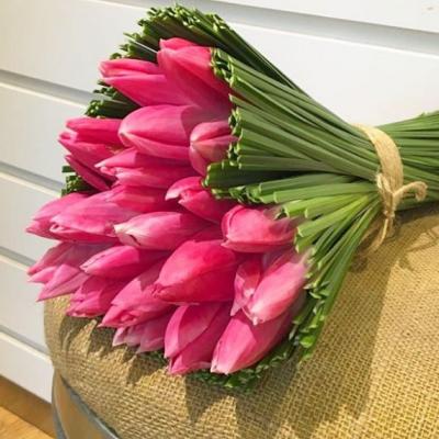 Lily Fleur Flowers