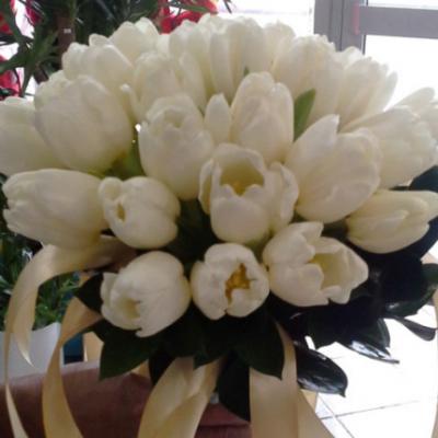 Rasha Flowers