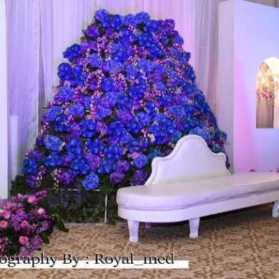 Royal Med Photography