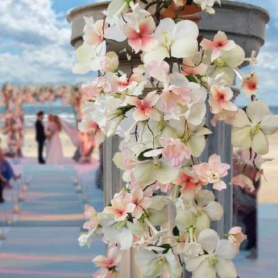 التيميت بلانر للأزهار