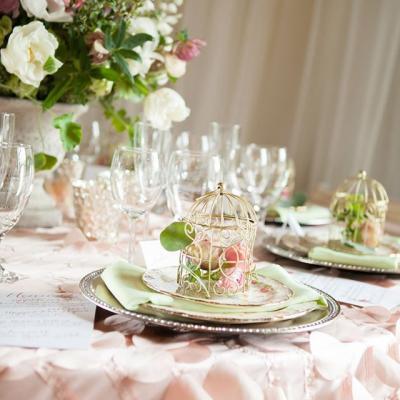تشيرز لتنظيم الأعراس