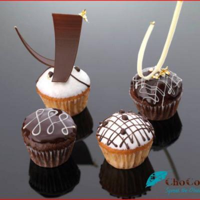 Chocolate ChoCo'a