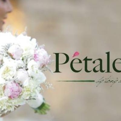 Pétale Rose Flowers