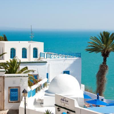 Wedding suppliers in Tunisia