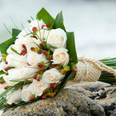 أزهار لافيتا ان روز