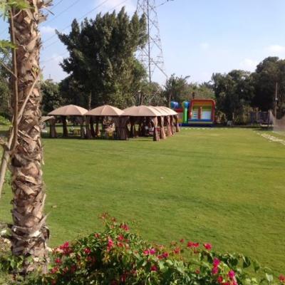 Mansoureya Park
