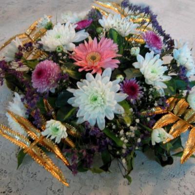 Orchida Flowers