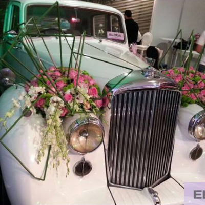 Elma Wedding Cars