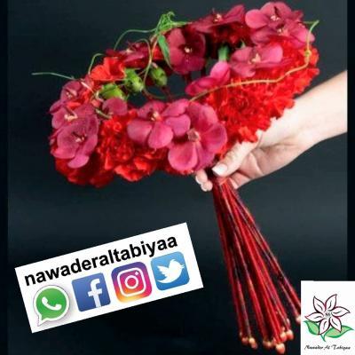 Nawader Al Tabiyaa
