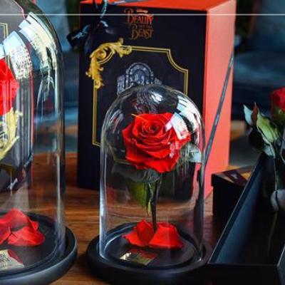 Forever Rose - Dubai