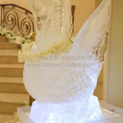 Jaleed Jordan