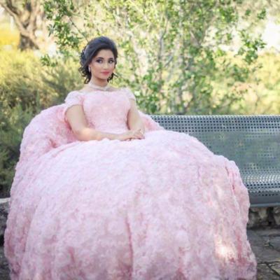 La Novia Bridal Gowns