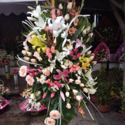 Afrah Fleurs