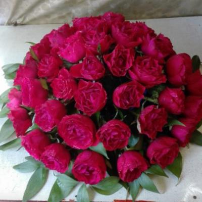 Alger Fleurs