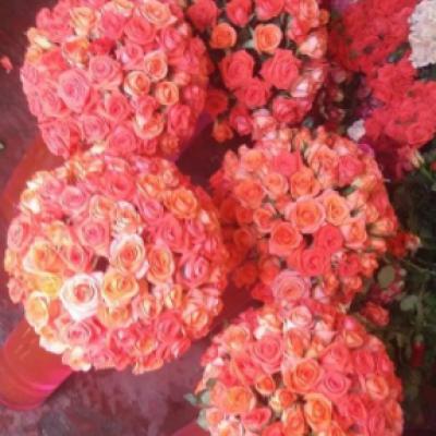 Fleuriste Dar Bouazza