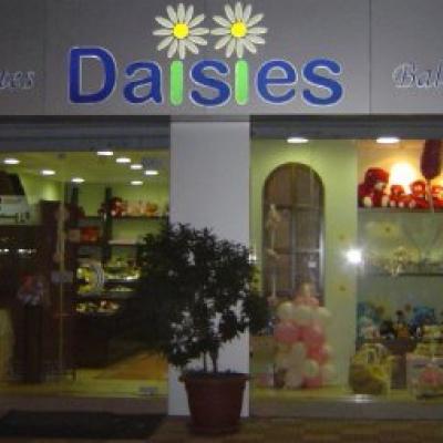 Daisies Chocolates & Balloons