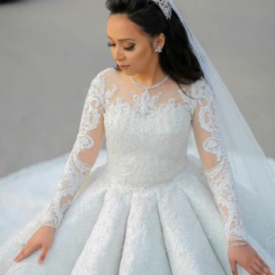 علاء التونسي