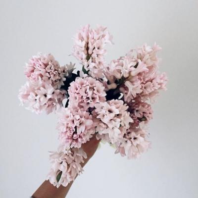 استوديو الأزهار