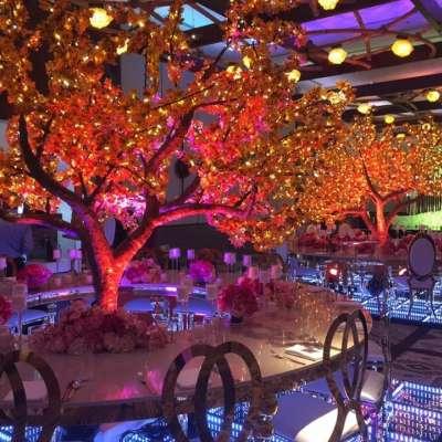 Lapita Hotel Dubai Parks and Resorts 5