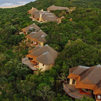 4 Beautiful Safaris For Your Honeymoon