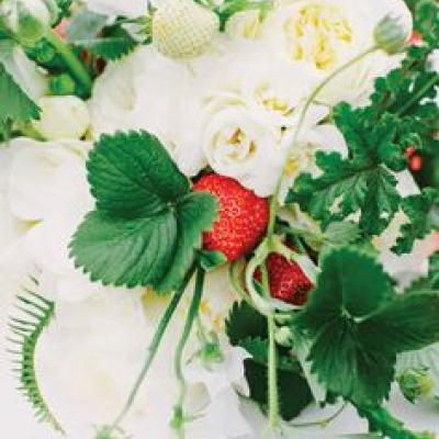 Your Wedding in Colors: Red, White, and Green